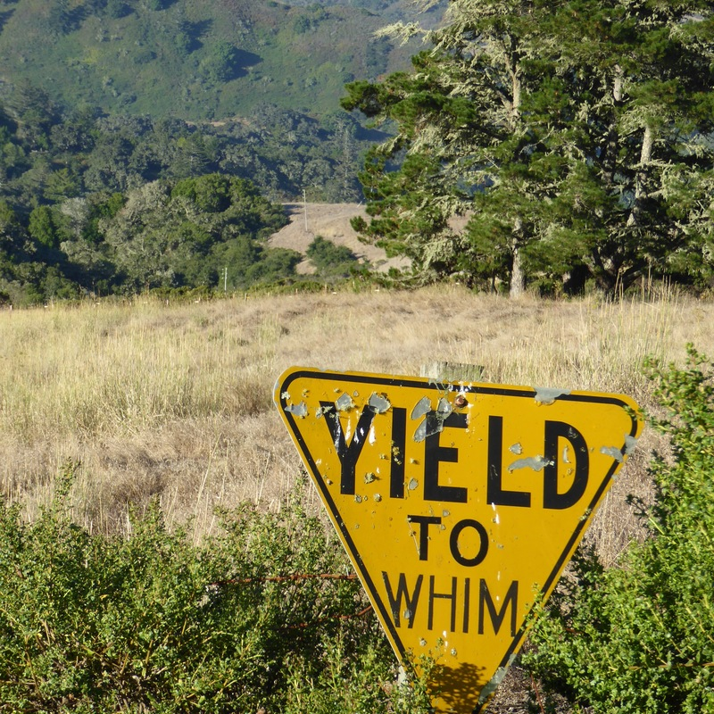 Yield to whim